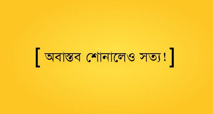 web design yellow banner